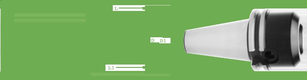 16 mm Standard Length Metric Centaur B40E16MM BT 40 Endmill Holder